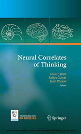 Neural Correlates of Thinking